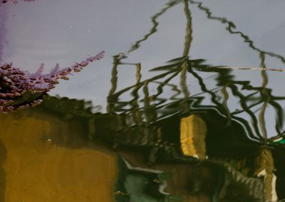 Pflanzenrest auf Wasser Venedig