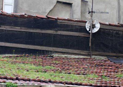 bewachsenes Dach Istanbul